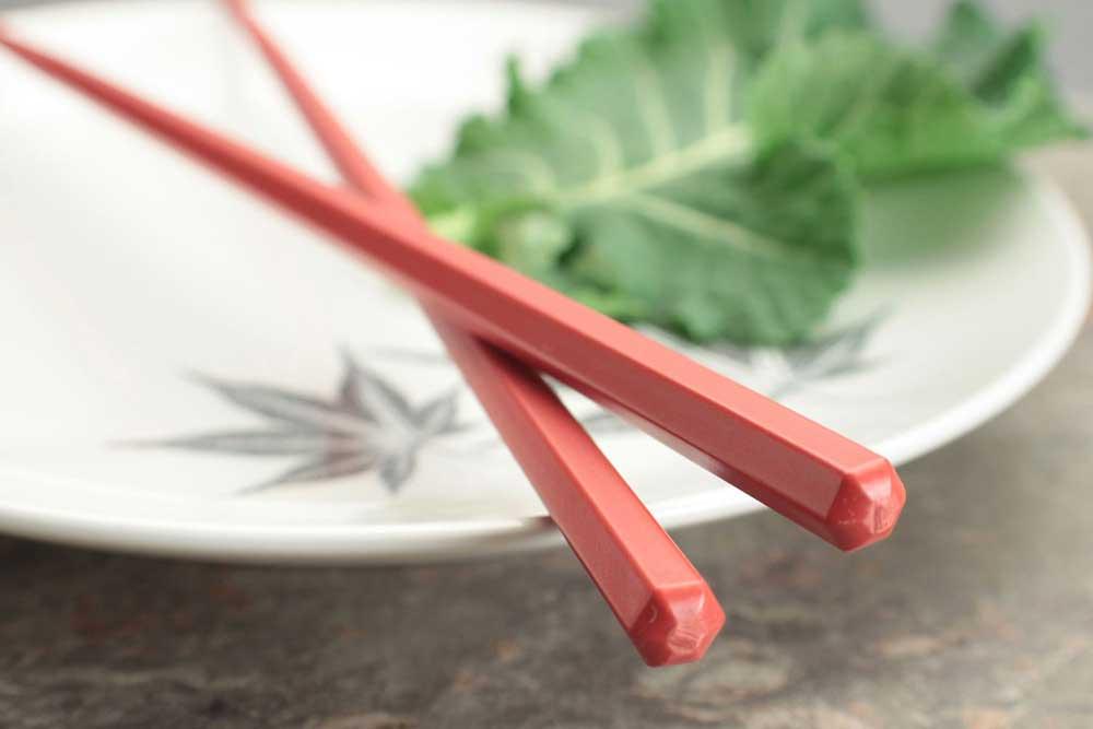 Plastic Eco Red Hex Dishwasher Safe Japanese Chopsticks